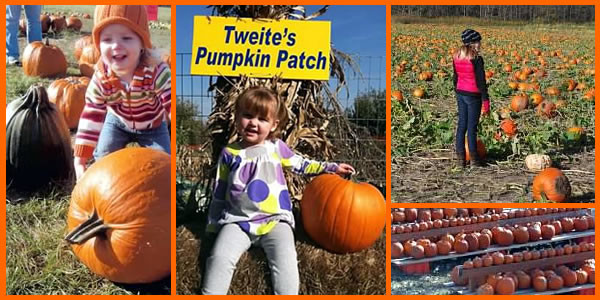 Slide_pumpkinPatch